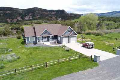 Single Family Home For Sale: 14750 N Ouray Court
