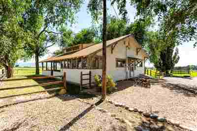 Fruita Single Family Home For Sale: 1333 19 Road