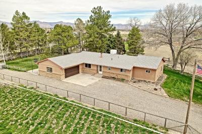 Fruita Single Family Home For Sale: 1154 18 1/2 Road