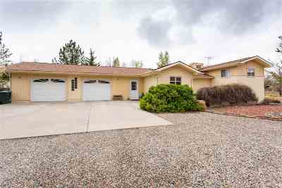 Grand Junction Single Family Home For Sale: 225 Camino Del Rey