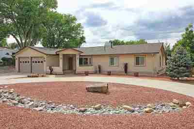 Grand Junction Single Family Home For Sale: 699 Glen Caro Drive