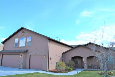 Fruita Single Family Home For Sale: 1058 Chinle Court