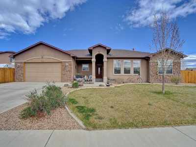 Fruita Single Family Home For Sale: 1023 Red Canyon Avenue