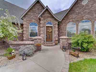 Grand Junction Single Family Home For Sale: 2542 Falls View Circle