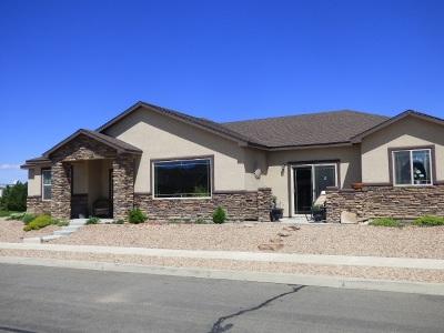 Fruita Single Family Home For Sale: 429 Kiefer Court