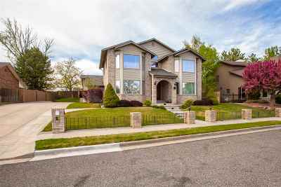 Grand Junction Single Family Home For Sale: 1624 Crest View Court