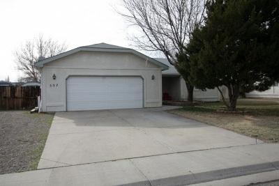 Single Family Home For Sale: 537 N Oak Street