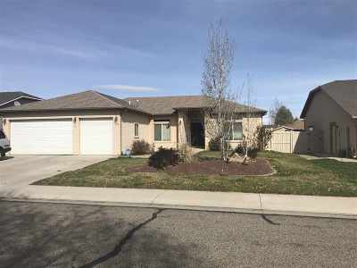 Fruita Single Family Home For Sale: 734 Placer Drive
