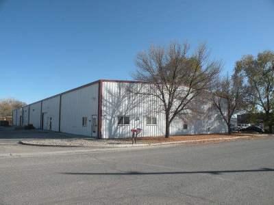 Grand Junction Commercial For Sale: 486 Morning Glory Lane