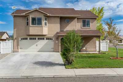 Fruita Single Family Home For Sale: 807 Delean Way