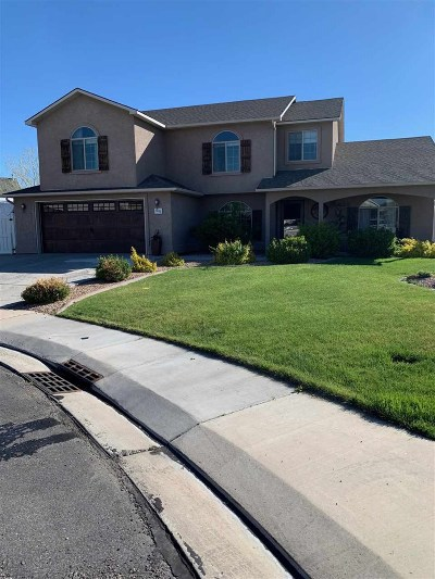 Fruita Single Family Home For Sale: 1002 Ed Court