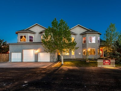 Grand Junction Single Family Home For Sale: 638 Horizon Drive