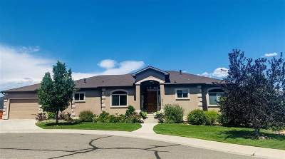 Grand Junction Single Family Home For Sale: 2044 Jordan Court