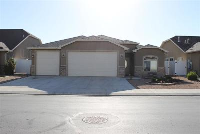Grand Junction Single Family Home For Sale: 671 Chalisa Avenue