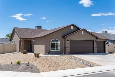 Grand Junction Single Family Home For Sale: 455 Dodge Street