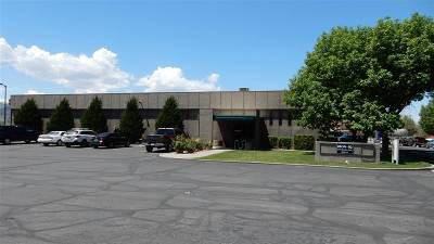 Grand Junction Commercial For Sale: 245 South Avenue