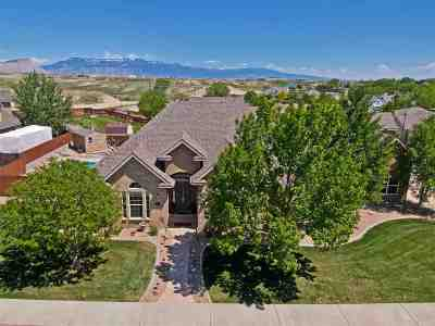 Grand Junction Single Family Home For Sale: 866 N Haven Crest Court