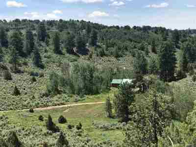 Whitewater Single Family Home For Sale: 6501 Uncompahgre Divide Road