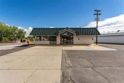 Commercial For Sale: 2700 S Highway 50