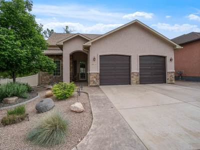 Grand Junction Single Family Home For Sale: 2699 Little Creek Road