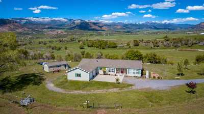 Single Family Home For Sale: 57612 Oe Road