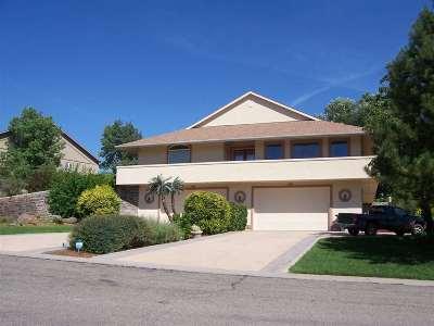 Grand Junction Single Family Home For Sale: 3760 Horizon Glen Court
