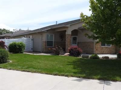 Single Family Home For Sale: 222 Basalt Street