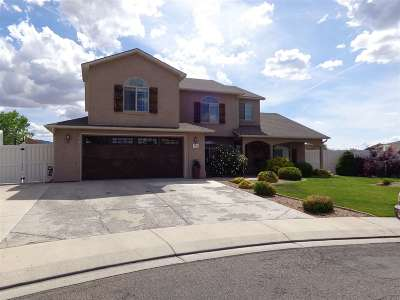 Fruita Single Family Home For Sale: 1002 Ed Court