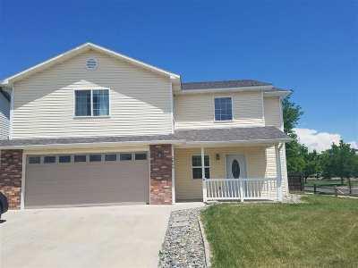 Single Family Home For Sale: 2805 Village Park Drive