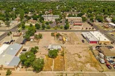 Grand Junction Commercial For Sale: 1115 Ute Avenue