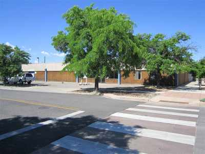 Grand Junction Commercial For Sale: 201 S 6th Street