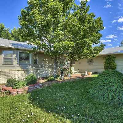 Grand Junction Single Family Home For Sale: 645 Avalon Drive