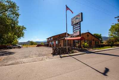 Mesa Commercial For Sale: 10900 Highway 65