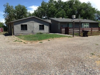 Grand Junction Single Family Home For Sale: 856 22 Road
