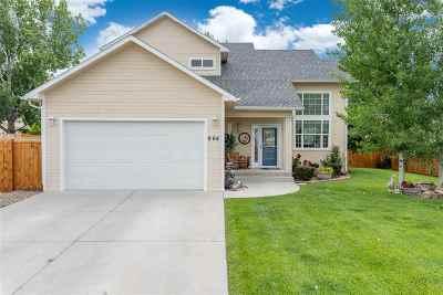 Fruita Single Family Home For Sale: 964 E Columbine Avenue
