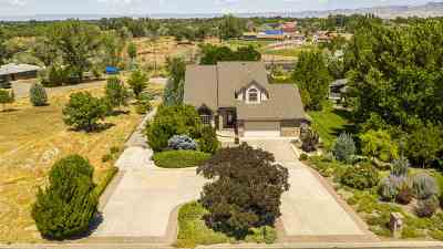 Grand Junction Single Family Home For Sale: 2632 Chestnut Drive