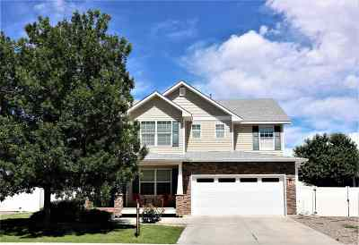 Single Family Home For Sale: 146 Arches Drive