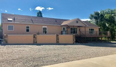 Single Family Home For Sale: 519 Reed Mesa Drive