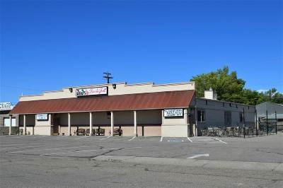 Fruita Commercial For Sale: 152 & 166 S Mesa Street