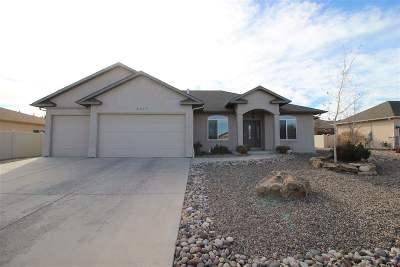 Single Family Home For Sale: 2979 Comanche Court