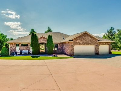 Grand Junction Single Family Home For Sale: 654 Independence Valley Drive
