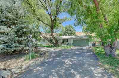 Palisade Single Family Home For Sale: 3648 G Road