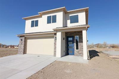 Single Family Home For Sale: 2474 Apex Avenue A