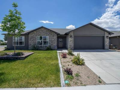 Single Family Home For Sale: 2983 May Drive