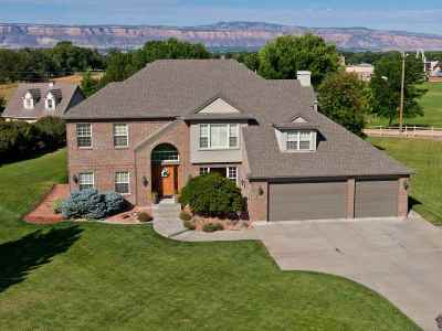 Single Family Home For Sale: 793 Garrison Court