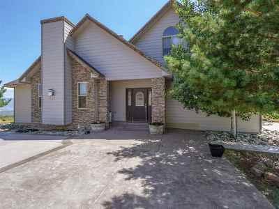 Molina Single Family Home For Sale: 53150 Bull Basin Road