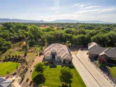 Grand Junction Single Family Home For Sale: 2585 Fox Run Drive