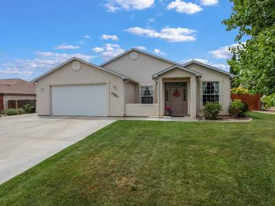 Single Family Home For Sale: 2983 Mesa Crest Place