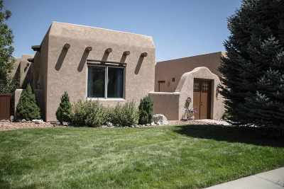 Single Family Home For Sale: 456 Snow Mesa Court