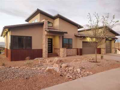 Single Family Home For Sale: 2336 Rabbit Brush Court